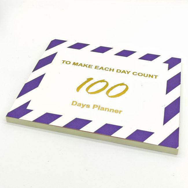 100-tage-planer-blau-liegend